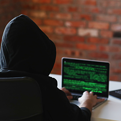 Ransomware and Cybercrime