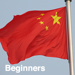 Chinese Mandarin Beginners (Talk Now)