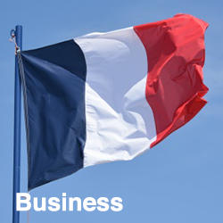 French Business (Talk the Business)