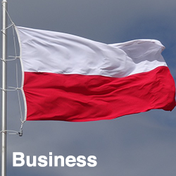 Polish Business (Talk the Business)