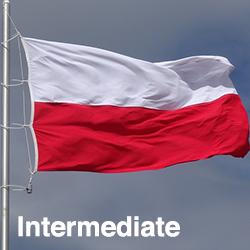 Polish Intermediate (Talk the Talk)