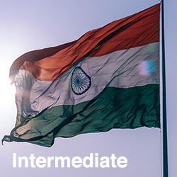 Punjabi Intermediate (Talk the Talk)