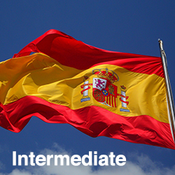 Spanish Intermediate (Talk the Talk)